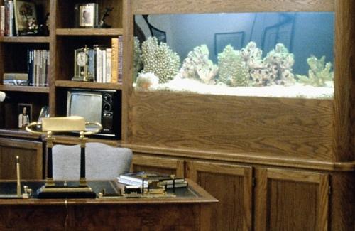 http://localhost/cosmo/wp-content/uploads/2012/04/10/aquarium-c.jpg