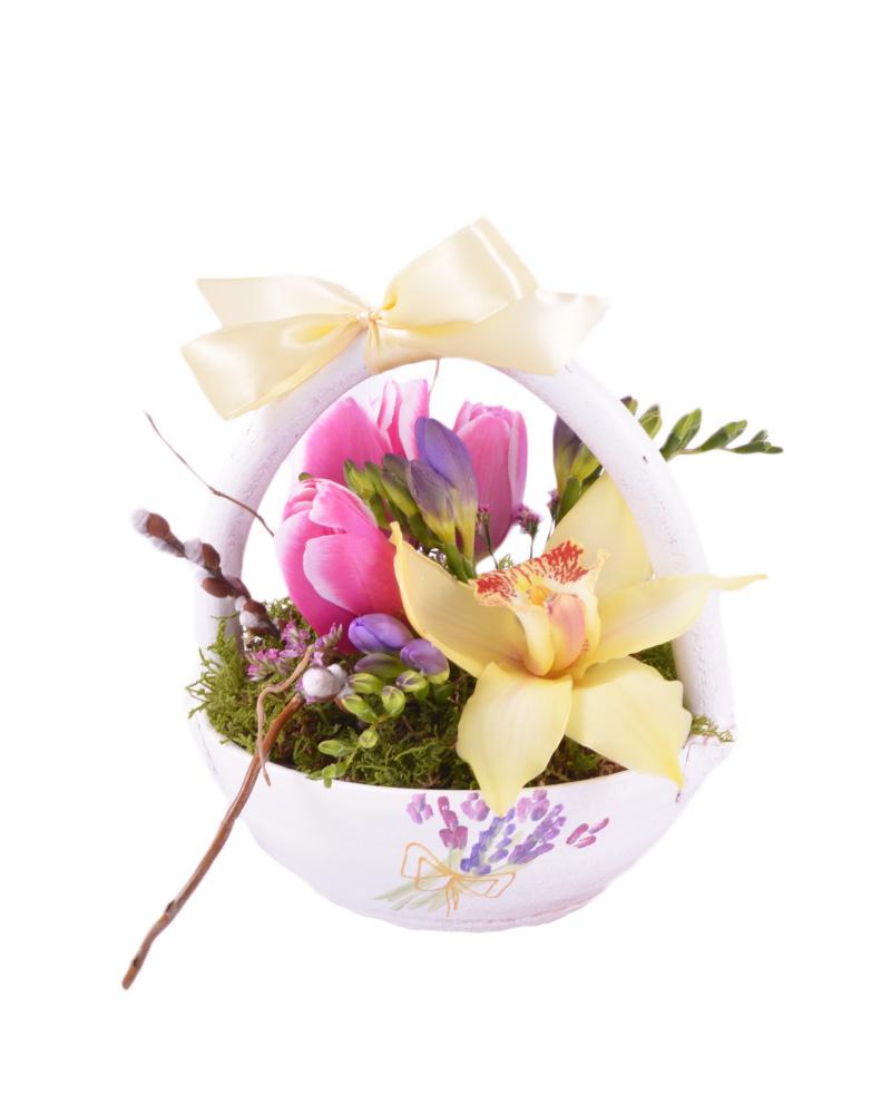 Florariamobila.ro - Cosulet cu lalele - 55 lei