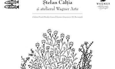 """Ierburi și flori transilvane"""