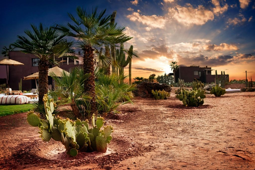 Experiență orientală în Marrakech