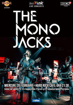mono_jacks