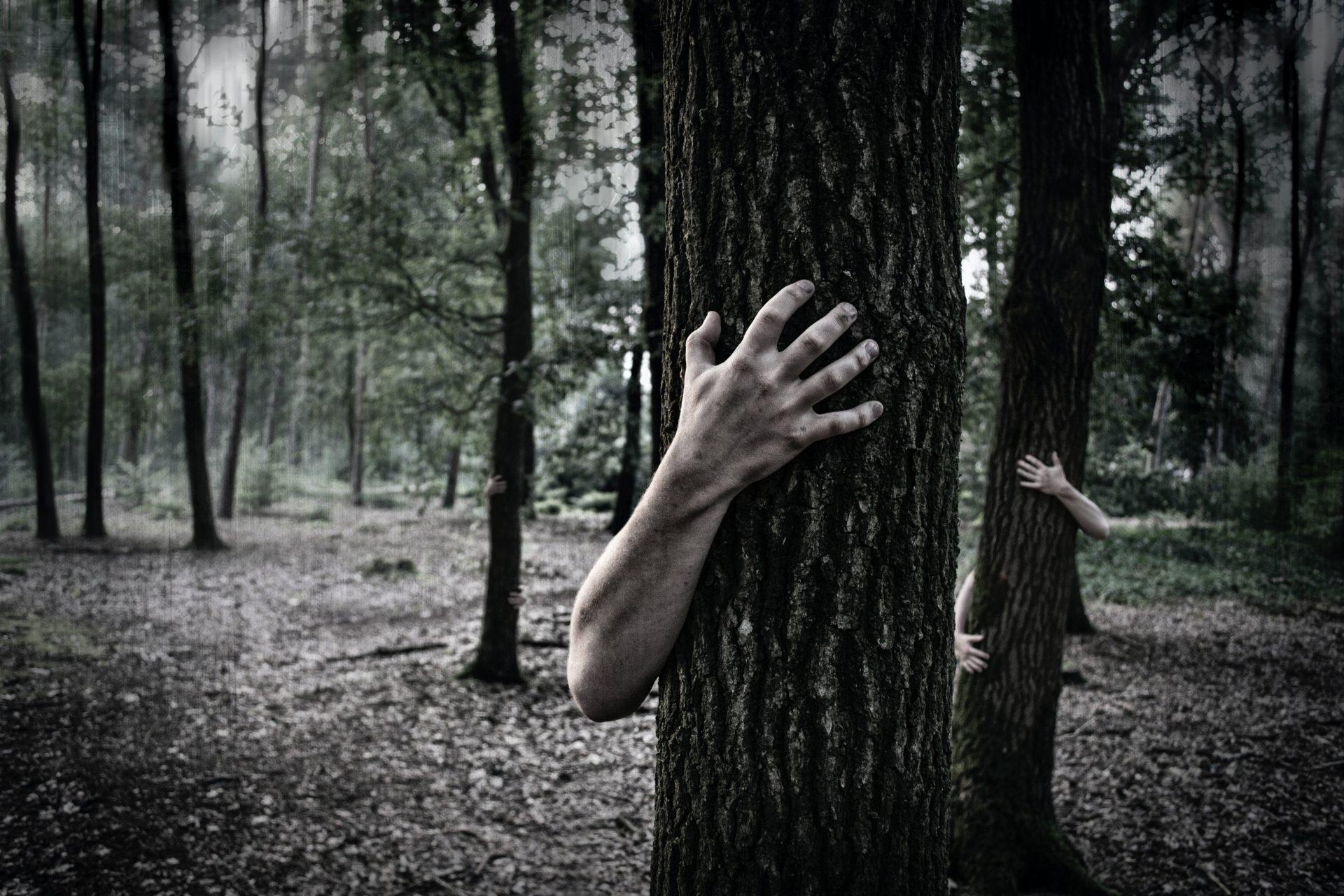 terapie cu copaci si padure
