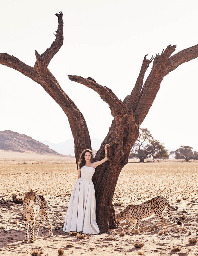 Angelina Jolie Harper's BAZAAR Romania ianuarie - februarie 2018